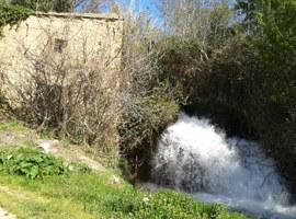 L'Ajuntament de Lleida assumeix la propietat de l'antic Molí de Cervià