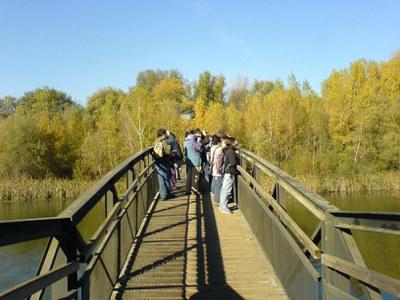 Imatge del event Visita guiada al Parc de la Mitjana - octubre 2019