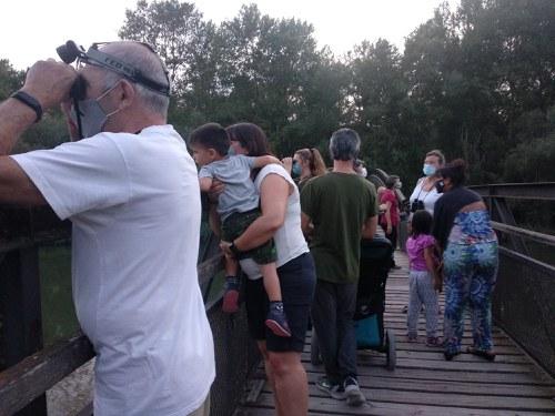 Imatge de la notícia Ecodescobertes a la Mitjana