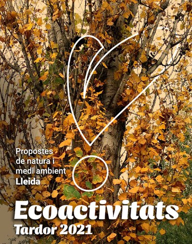 Imatge de la notícia El programa d'ecoactivitats de tardor comença diumenge amb una proposta per observar artròpodes