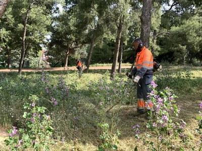 Els serveis de manteniment de la jardineria municipal posen a punt els parcs i jardins de la ciutat