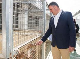"""Joan Queralt: """" L'Ajuntament de Lleida arribarà fins on calgui per defensar els treballadors del Centre d'Acollida i Adopció d'Animals de Companyia"""""""