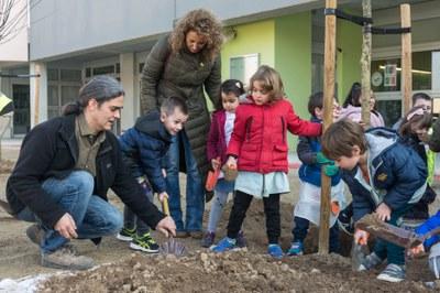 La Paeria inicia la plantació prop d'una cinquantena d'arbres en els patis dels centres educatius de Lleida