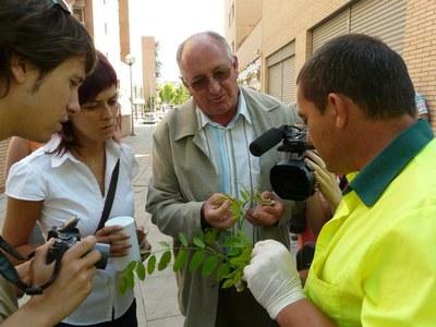 La Paeria utilitza un sistema biològic per controlar les plagues