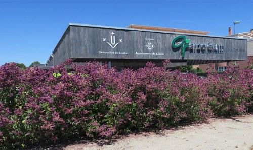 Imatge de la notícia L'Arborétum s'incorpora al conjunt de refugis climàtics de Lleida