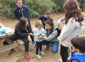 Imatge de la notícia Lleida celebra aquest cap de setmana el Dia Mundial dels Ocells amb diverses activitats ornitològiques