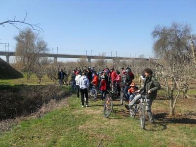 Cinquanta persones participen a l'Ecodescoberta per descobrir l'Horta en bicicleta