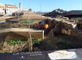 La plantació de l'arbrat completa l'obra de recuperació de l'antic barri de la Cuirassa