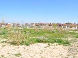 Imatge de la notícia La Paeria amplia fins al 5 d'octubre el termini per a presentar ofertes per la compra de 28 finques municipals per a fer-hi habitatges