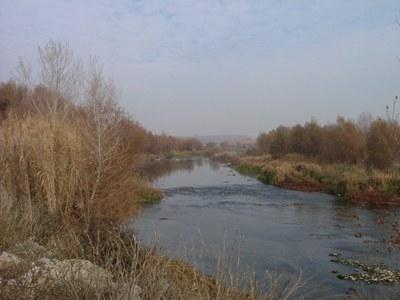 ECODESCOBERTA. El Riu Segre al seu pas per Lleida, del Molí de Picabaix als Aiguamolls de Rufea