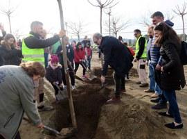 El paer en cap, Fèlix Larrosa, assisteix a la plantada d'arbres a l'escola El Vilot de Sucs