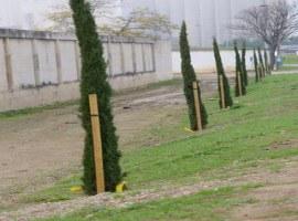 L'Ajuntament de Lleida adequa el talús de la carretera N-240 a l'altura del cementiri